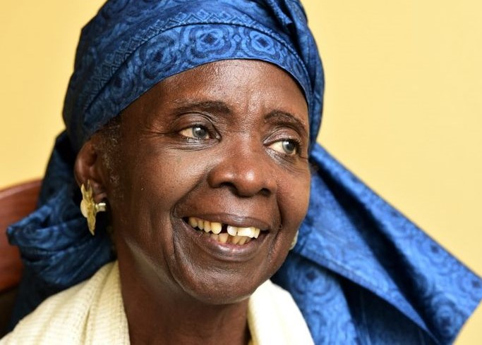 Aminata Sow Fall – Sesoeuvres